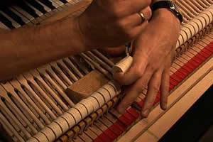 Zongoramánia - Pianomania