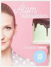 Sallay_Álom-süti-bor200
