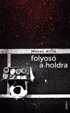 Ménes_Folyosó a holdra-bor240